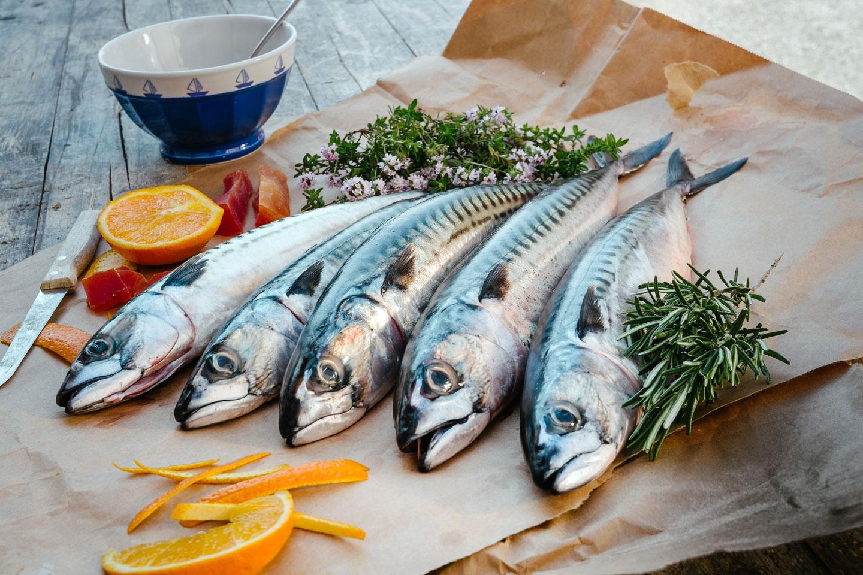 10 recettes de poisson frais